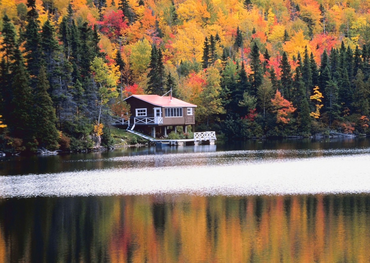 Autumn Cabin: Samantha Brown