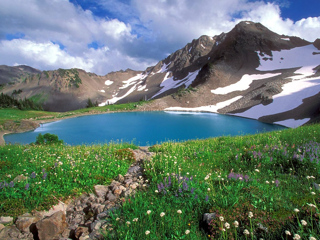 My favorite things in Washington State's National Parks