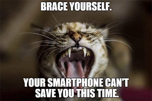 Brace-Yourself