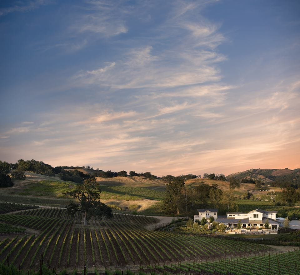 Lesser-known wine regions - paso robles