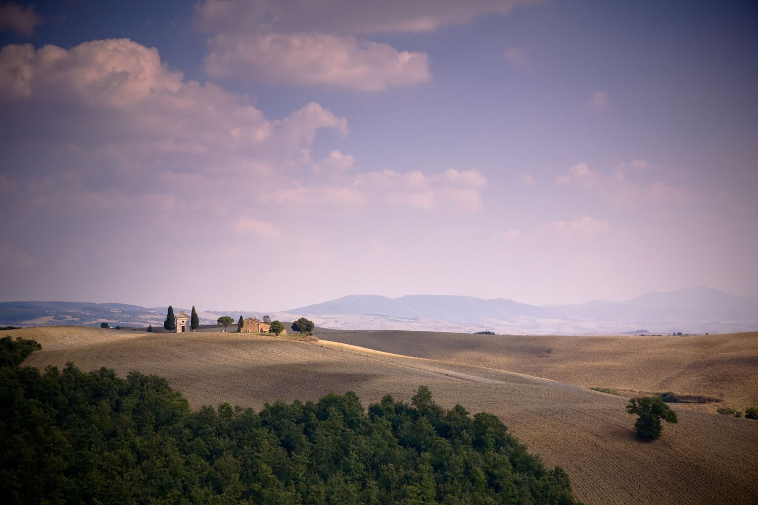 Dine Like A Local In Tuscany