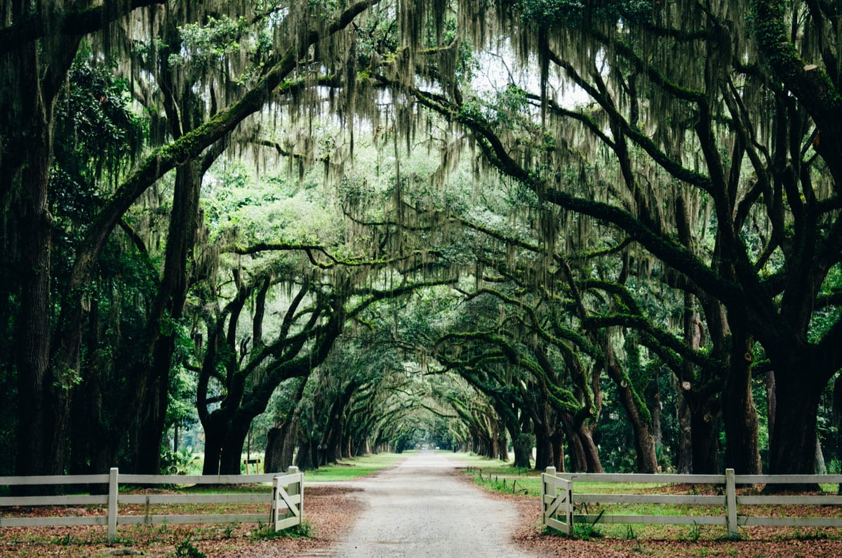 The Perfect Long Weekend In Savannah, Georgia
