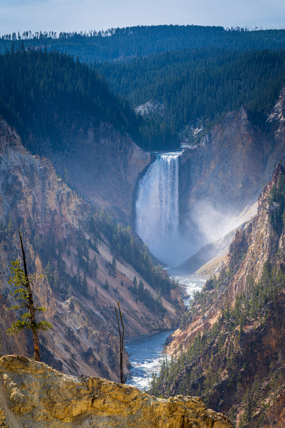 A Local's Guide to Yellowstone National Park